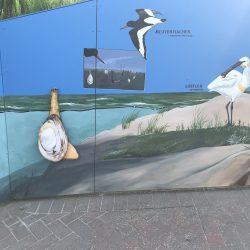 Wattenmeer4